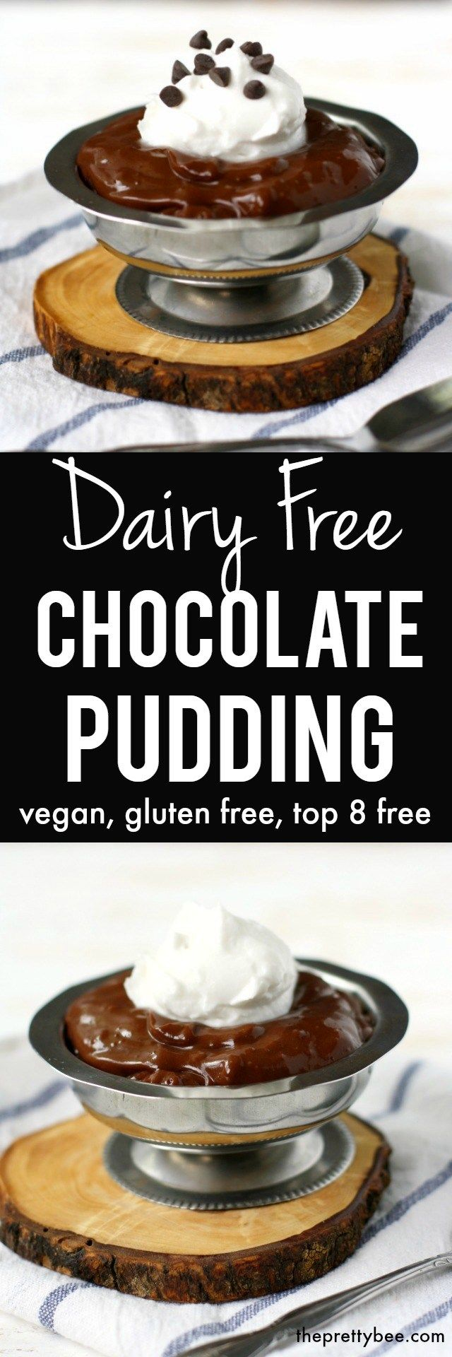 Creamy, delicious, DECADENT dairy free chocolate pudding recipe.