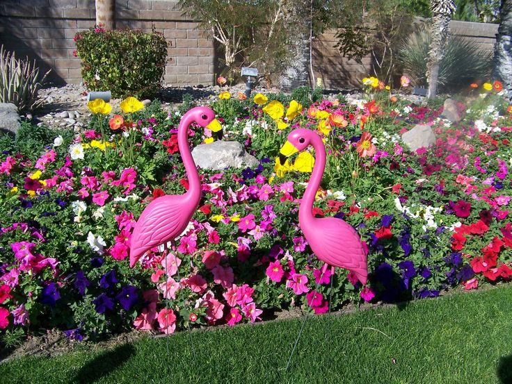 Flamingos tending the garden Pink flamingos lawn