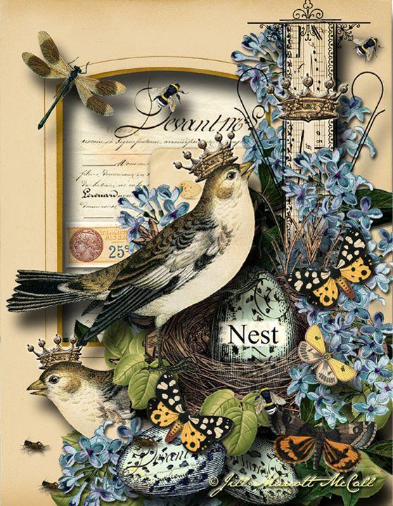 NEST- Jill Marcott-McCall 2016 For Graphics Fairy Premium Membership Site