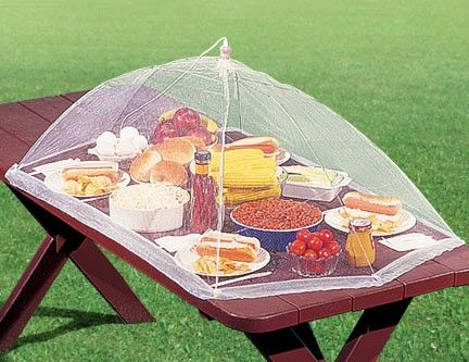 how to keep flies away from food at picnic