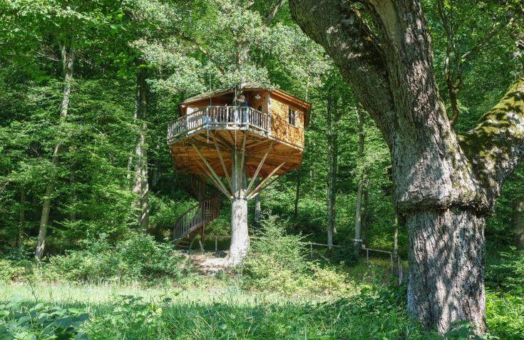 We❤ Glamping! Huur een luxe boomhut bij Baumhaushotel Seemühle in Beieren, Duitsland ✓ In de natuur ✓ Met sanitair ✓ Kindvriendelijk. Boek direct bij de aanbieder!