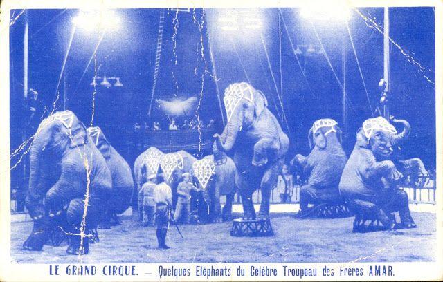 Circus collection: Cirque Amar 1957