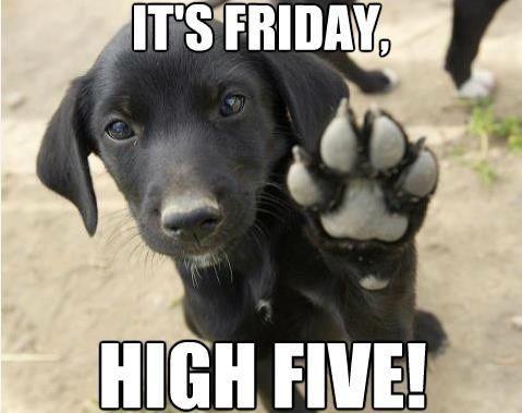 Its Friday Hi Five                                                                                                                                                      More