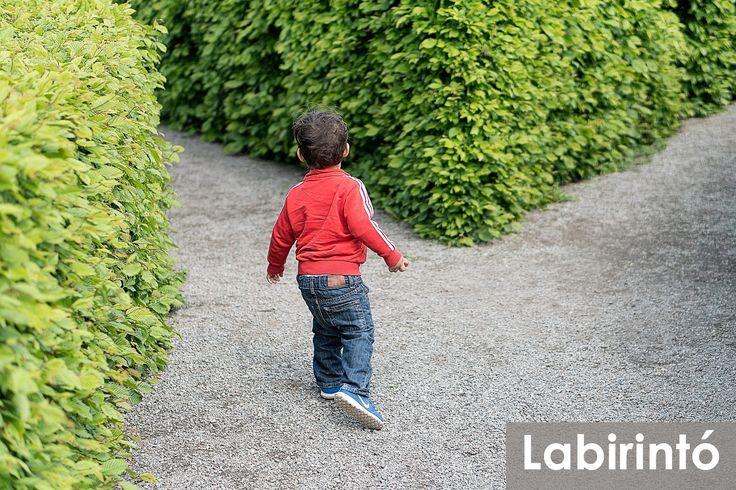 A nem a legkisebb királyfi útnak indul, hogy megfejtse a Labirintó titkát.