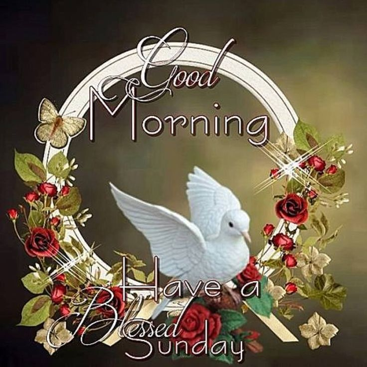 Good Morning Have A Blessed Sunday