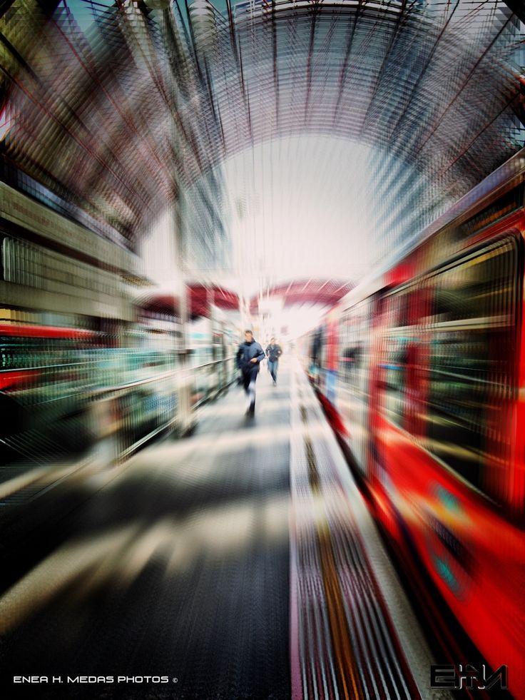 Frenzy by Enea H. Medas  on 500px