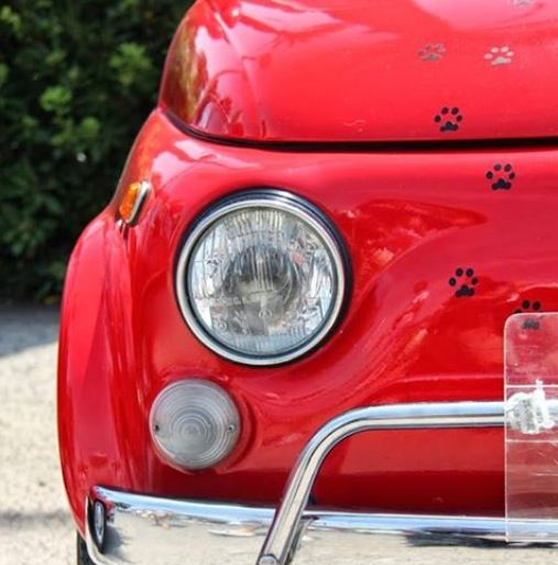 17 Best Images About Vintage Fiat 500, Italy On Pinterest