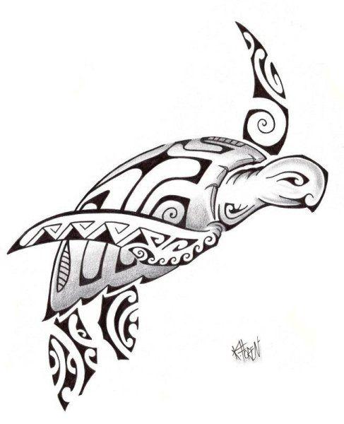 tortue polynésienne - Recherche Google