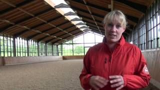 International #Dressage horse Fiona Bigwood's Top Tips  #trainingthedressagehorse