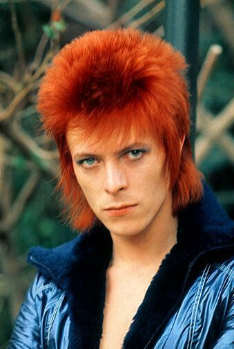 David Bowie - my fashion and music idol.