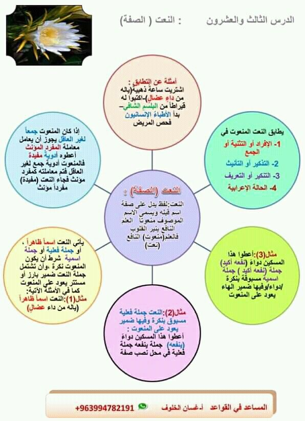 Pin By سنا الحمداني On النحو Arabic Language Arabic Worksheets Language