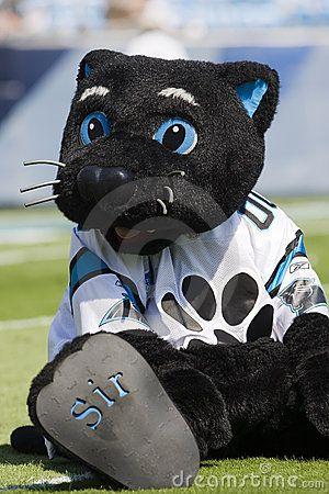 Sir Purr---Carolina Panthers Mascot