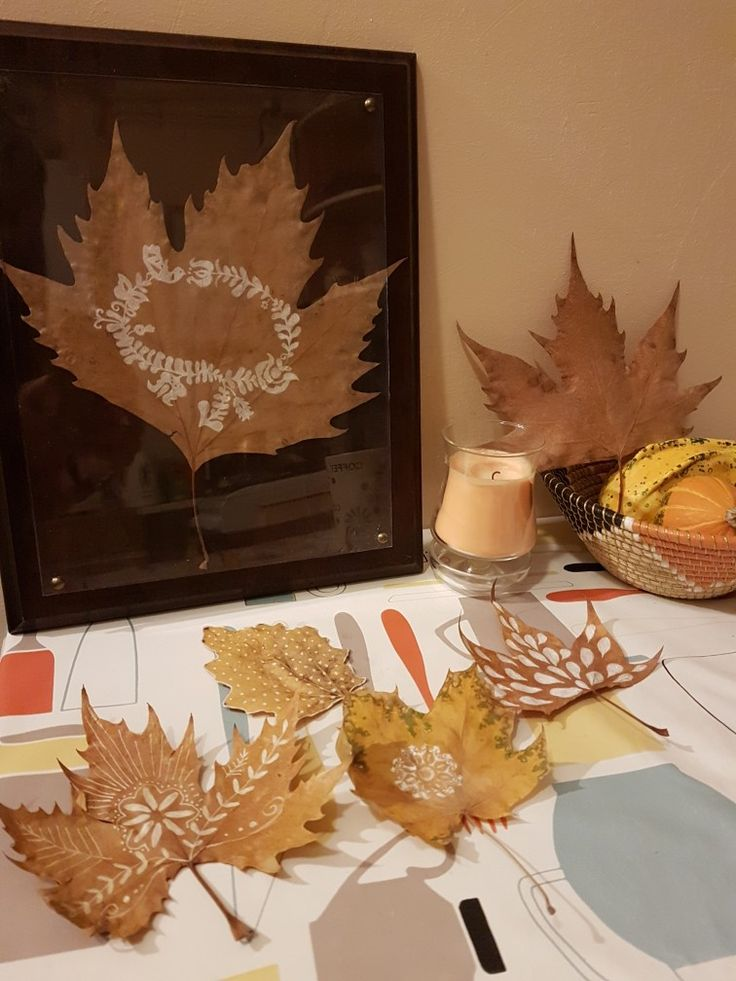 Drawings and patterns on autumn leaves