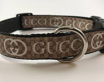 gucci dog collar - Google Search