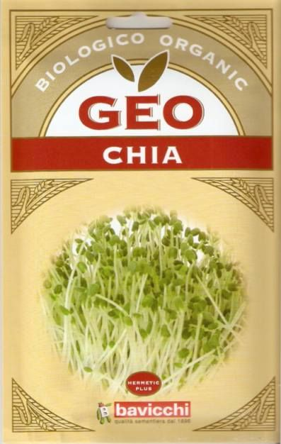Germogli di Chia Bio -Semi - Semilandia