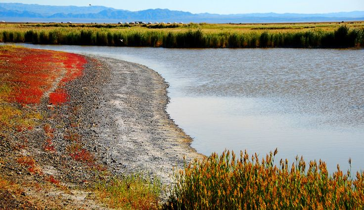 Uvs nuur (foto Federico Pistone) • www.mongolia.it