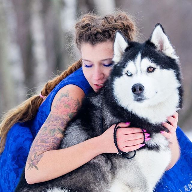 Model: Inessa Tihonova Dog-model: Semargl Storm Photographer: Valius Werwolf  #семарглшторм #semarglstorm #любовь #съемкасхаски #huskies_of_instagram #husky #huskylove #siberianhuskyworld #huskysiberiano #арендахаски #хаскидляфотосессии #арендахаскимосква