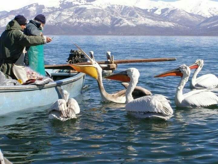 Lake Prespa, Florina, Greece