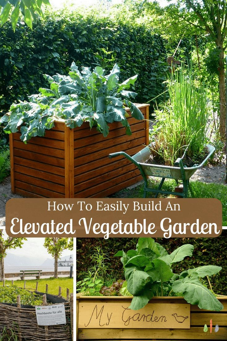 How To Easily Build An Elevated Vegetable Garden Indoor