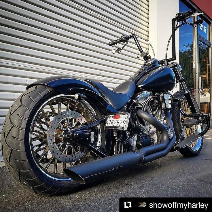 #Repost @showoffmyharley (@get_repost)  : @von_erick Softail Standard  ________________________________________  #showoffmyharley #SOMH #teamSOMH  ________________________________________ #harleydavidson #Harley #softail #dyna #sportster #bagger #freedom #motorcycle #bikelife #motor #love #beautiful #custom #hd #igers #photooftheday #instagood #softailgram #bobber #chopper #l4l #picoftheday #follow #followme #repost #shoutout