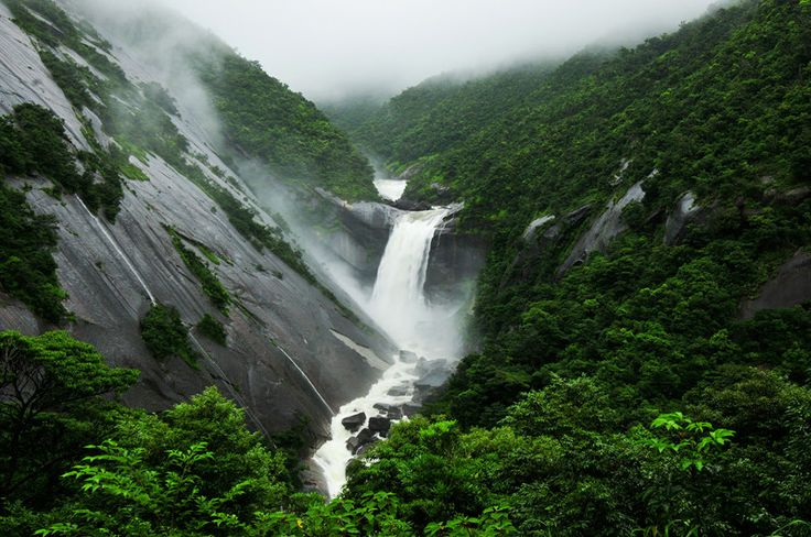This is Yakushima Island, a small Island in the Southwestern island chain of Japan (on the way to Okinawa).