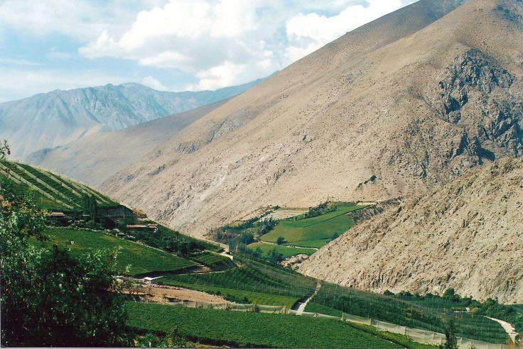 La Serena, Chile - located near where the Atacama Desert meets the central valley.