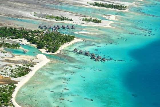 En medio de un bosque de cocoteros salvaje, en una playa de arena rosa, en un atolón de la polinesa ... - Tikehau Pearl Beach Resort | Texto: Carolina G. Miranda