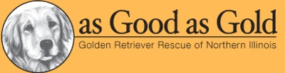 We have rescued two sets of Golden Retrievers from this organization! This volunteer organization is so well managed and structured and they've rescued over 1200 animals!
