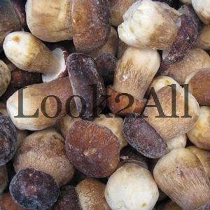 Freezing Raw Mushrooms.Mushrooms, pilze, fungi, funghi, champignons, huby, grzyby, gljive