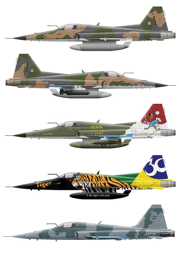 F-5 Tiger Brazilian Air Force