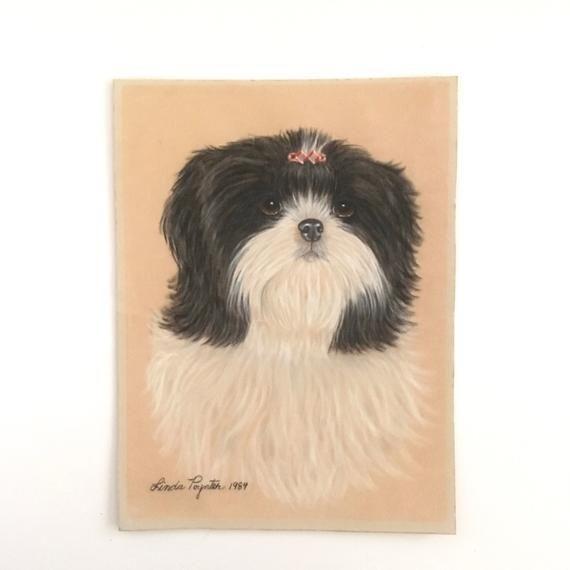 Shih Tzu Painting Velvet Dog Drawing Pet Portrait Pet Portraits