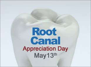 Root canals are an important part of dental care whose long term benefits outweigh the temporary dental phobia of the dentist drill.