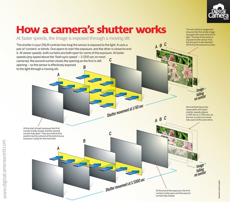 Your camera's shutter: so how does it actually work? (free photography cheat sheet) | Digital Camera World