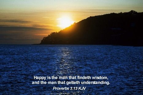 Happy is the man that findeth wisdom, and the man that getteth understanding. Proverbs 3:13