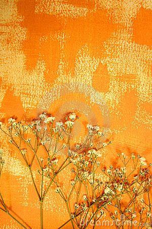 oranje-kleur-geschilderd-document-en-droge-bloemen