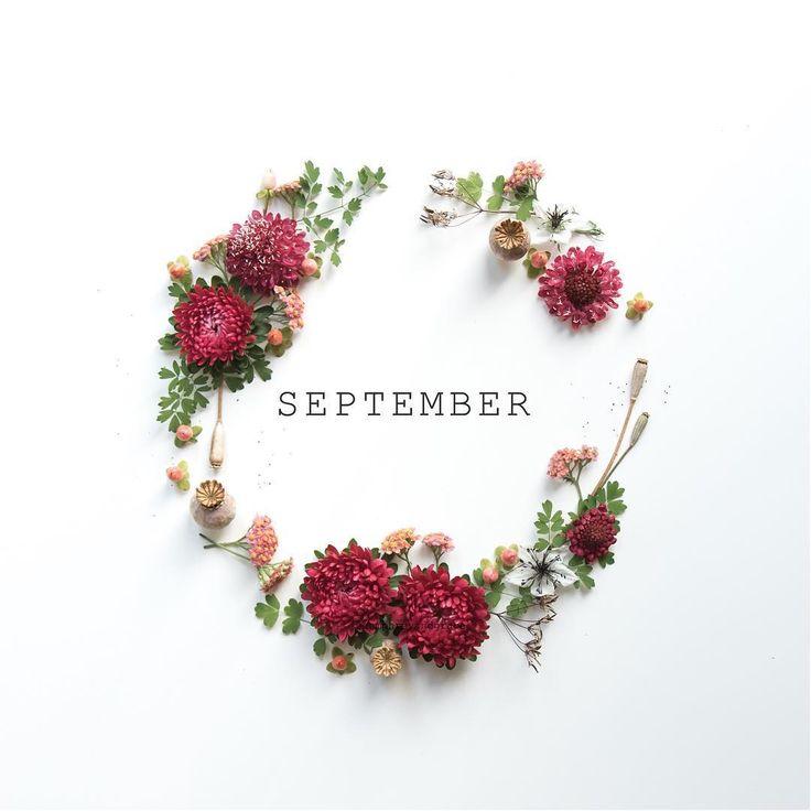 ☘ Ⱳᴇʟϲoмᴇ ༻  September
