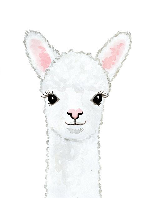 Baby Alpaca Print
