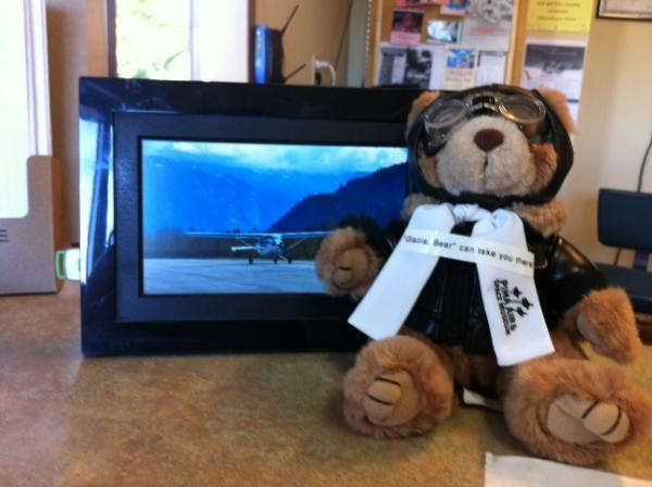 Glacier bear can take you there! Open daily - year round - all ages welcome! From $69