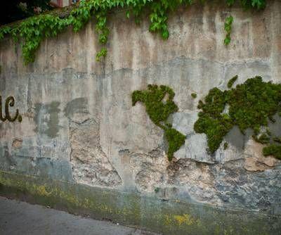 11 best graffiti mousse images on Pinterest Vertical gardens - preparer un mur pour peindre