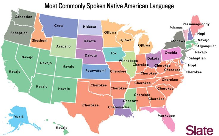 A series of maps showing what languages other than English are spoken in each state.