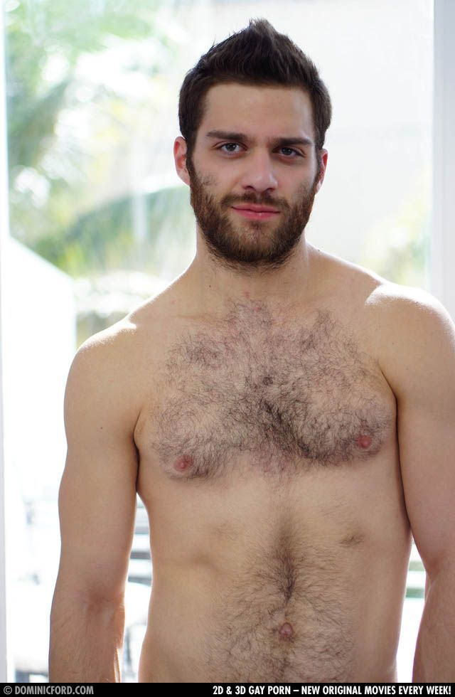tommy defendi hairy men hairy guys tommy defense