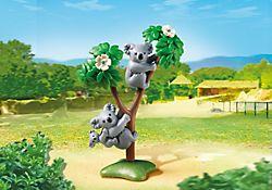 Koala's met baby - verjaardagscadeau 4de verjaardag Milas van de Derveeuwkes