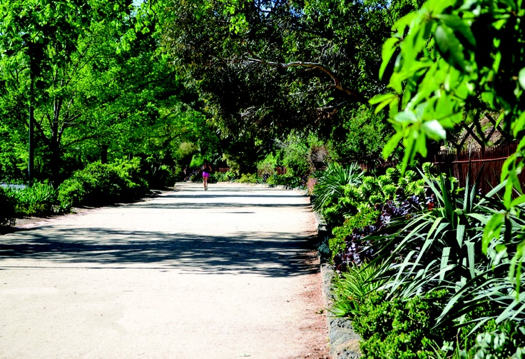 The Tan Track, Royal Botanic Gardens - Melbourne  Photography by: Nadine Wilson