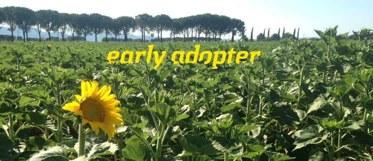 Early Adopter - Photo Bruno Spinazzola