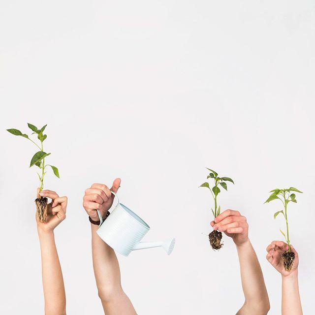 Blog Post Empezamos Una Nueva Conversacion Sobre Sostenibilidad