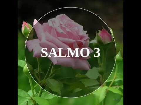 SALMO 3 / Salmo de David cuando huía de Absalom su hijo.