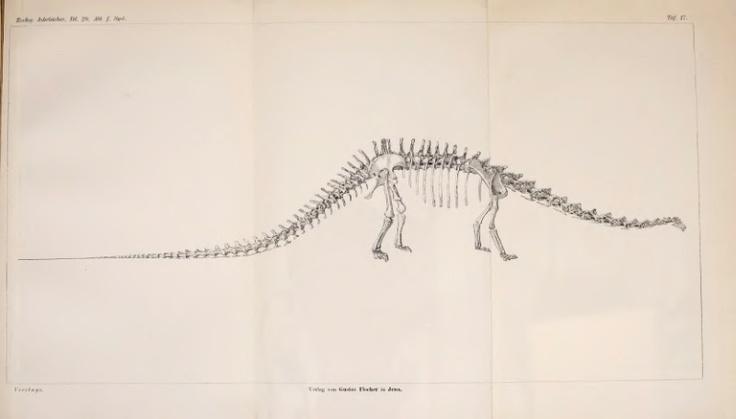 Waren die sauropoden Dinosaurier Pflanzenfresser? - BioStor