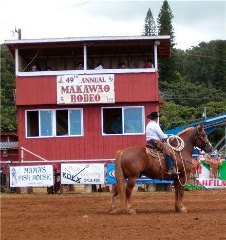 makawao girls 75 reviews #2 of 5 sights & landmarks in makawao features animals  325  waiahiwi rd, makawao, maui, hi save share  cowboy/girl aloha fantastic.