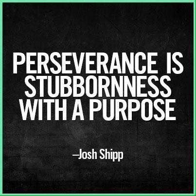 I have the persistence to persevere!