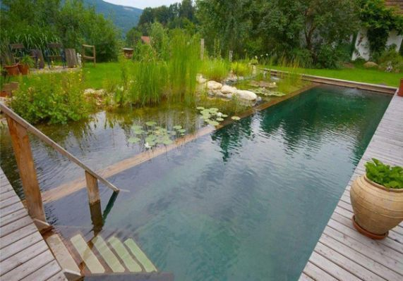 Natural Swimming Ponds | The Owner-Builder